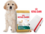 ROYAL CANIN Golden Retriever Junior 12kg + NOTES Royal Canin