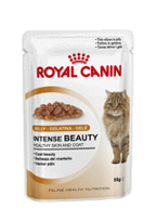 ROYAL CANIN Intense Beauty w galaretce Feline 85 g saszetka