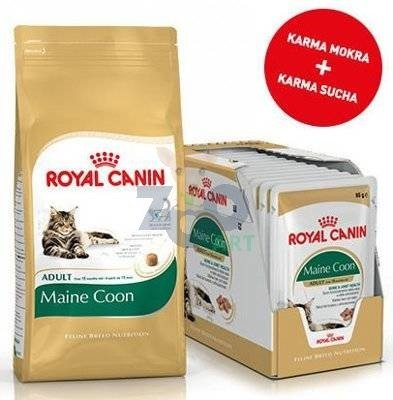 ROYAL CANIN Maine Coon Adult 31 2kg + 12x Maine Coon Adult saszetka 85g (Sos)