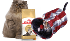 ROYAL CANIN Persian Adult 30 10kg + Tunel