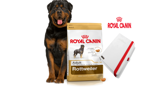 ROYAL CANIN Rottweiler Adult 12kg + NOTES Royal Canin