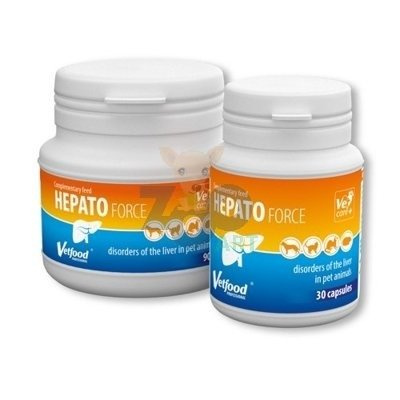 VETFOOD Hepatoforce 90kaps.