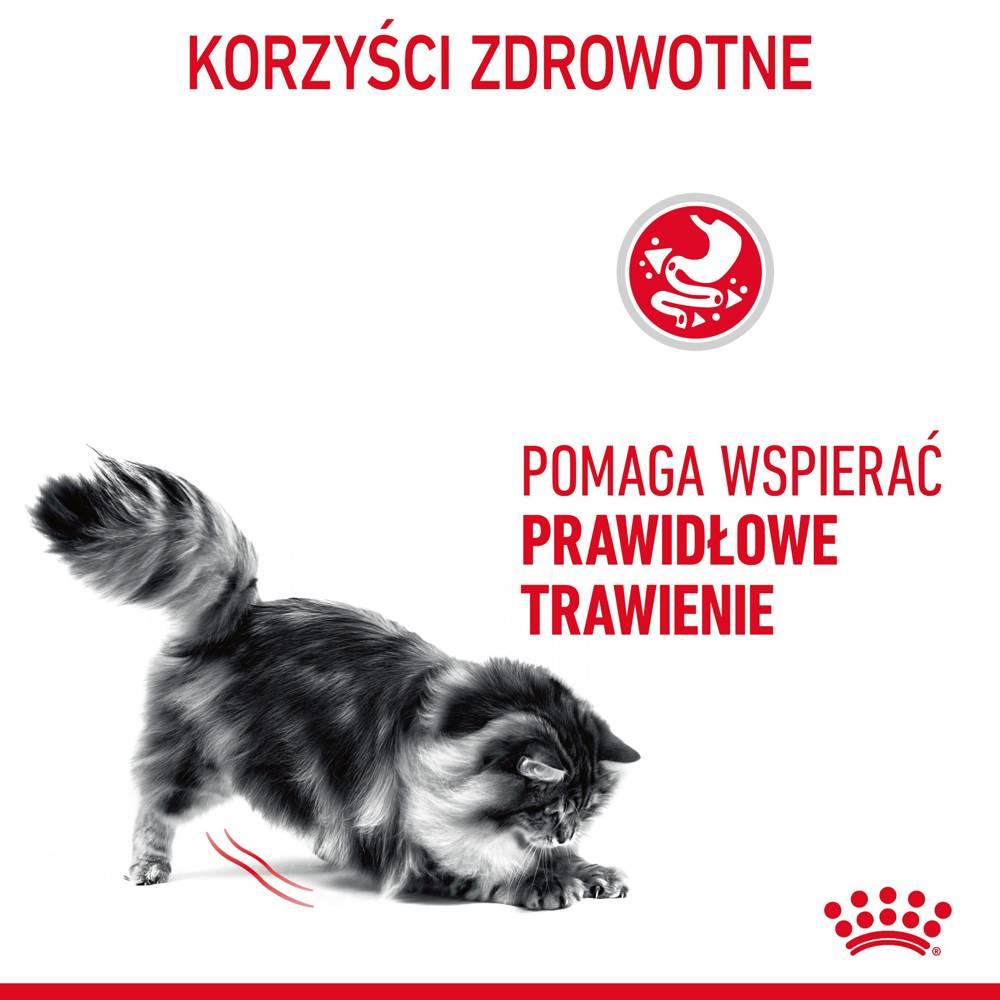 royal canin digest sensitive 12x85g saszetka sos internetowy sklep zoologiczny. Black Bedroom Furniture Sets. Home Design Ideas