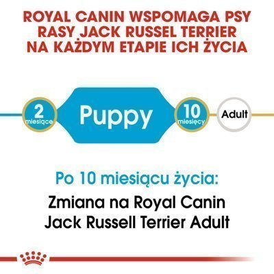 ROYAL CANIN Jack Russell Junior 500g