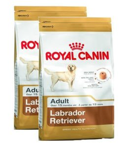 ROYAL CANIN Labrador Retriever Adult 2x12kg