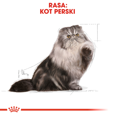 ROYAL CANIN Persian Adult 30 2kg