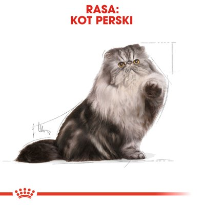 ROYAL CANIN Persian Adult 30 2x10kg
