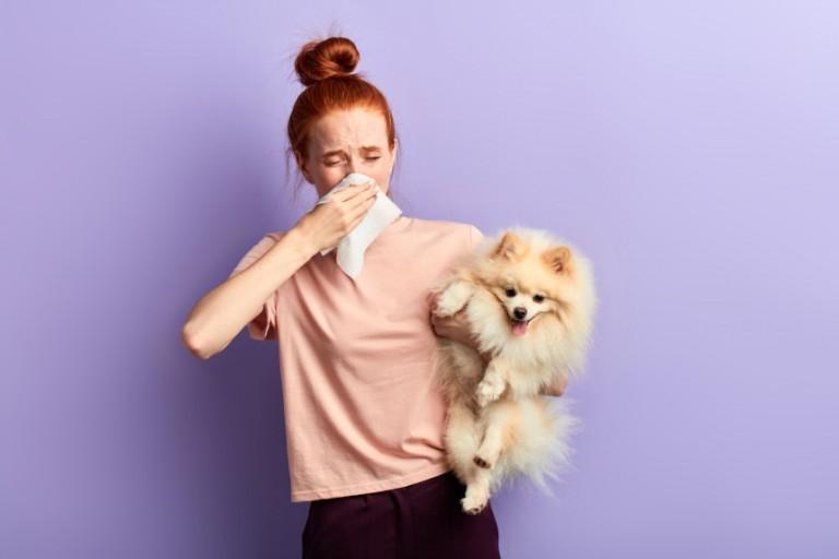 Psy dla alergików – jaką rasę wybrać?