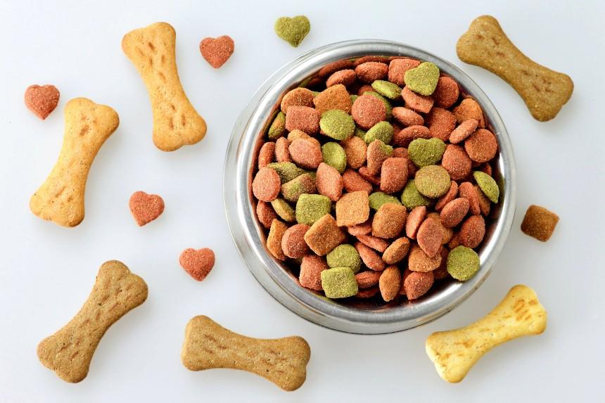 zaglądamy do psiej miski. jaki powinien być skład karmy?