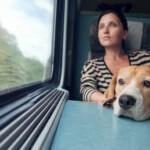 Przewóz psa w pociągu