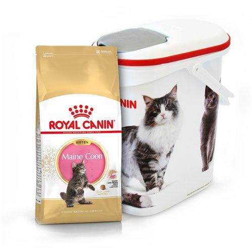 ROYAL CANIN Maine Coon Kitten 36 4kg + Pojemnik na karmę Curver 10l - 4kg .