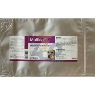 Dolvit Multical 1000g proszek