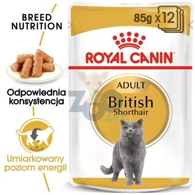 ROYAL CANIN British Shorthair Adult saszetka 12x85g (Sos)