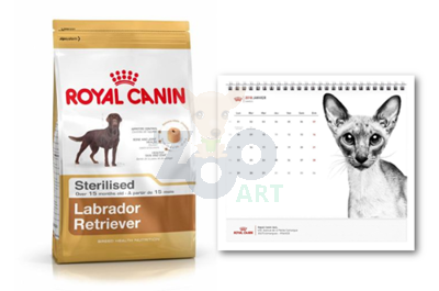 ROYAL CANIN Labrador Retriever Sterilised 12kg + Kalendarz GRATIS!