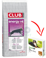 ROYAL CANIN Club Energy HE 20kg + BAYER Drontal - Dog flavour 2tabl.