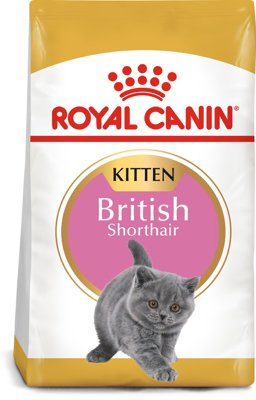 royal canin british shorthair kitten 2kg karma sucha dla koci t do 12 miesi ca rasy brytyjski. Black Bedroom Furniture Sets. Home Design Ideas